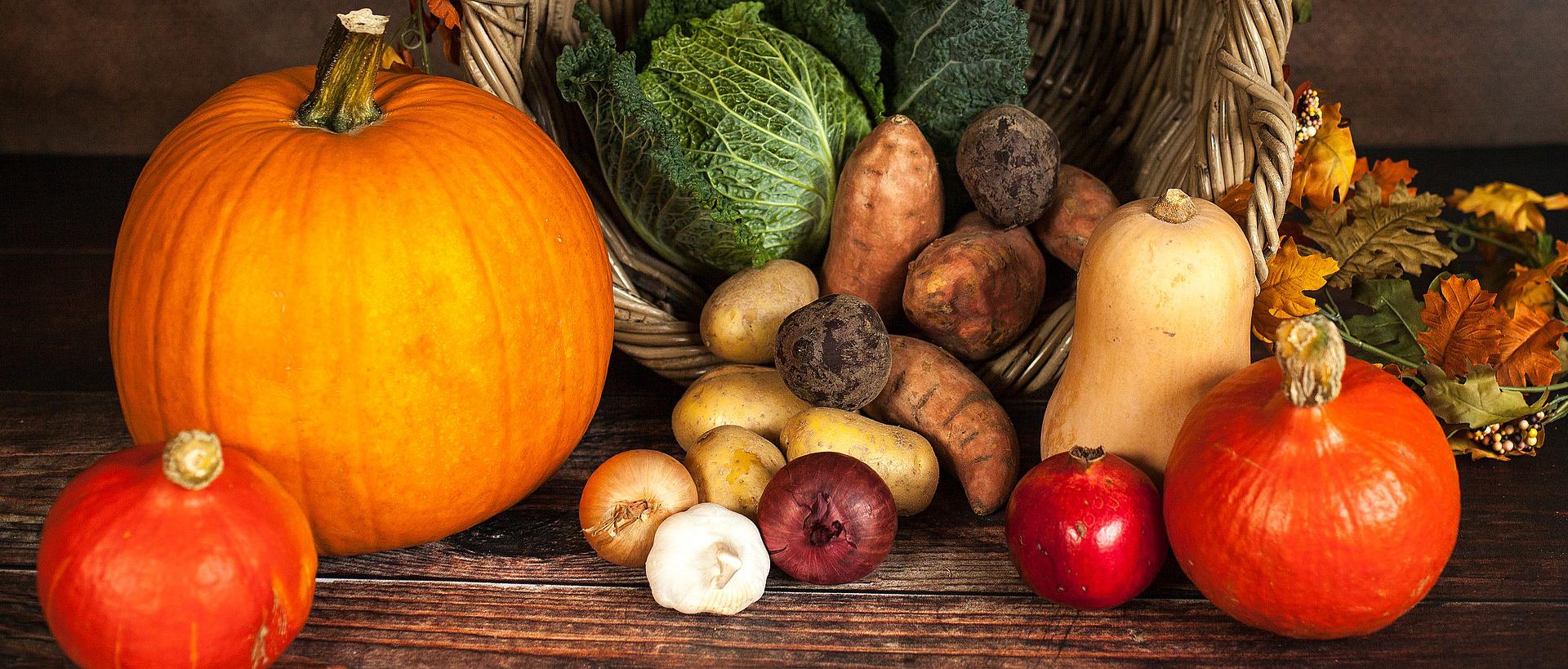 pl-thanksgiving-header